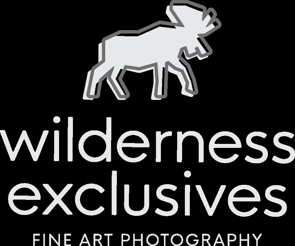 Wilderness Exclusives Fine Art Photography